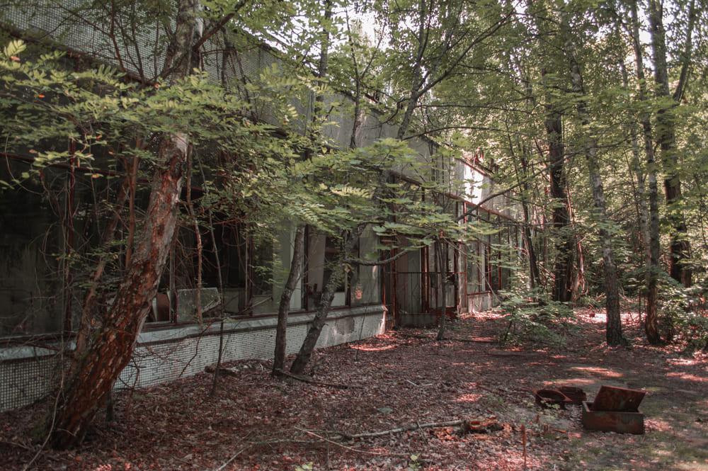 своим ходом в Чернобыль это опасно